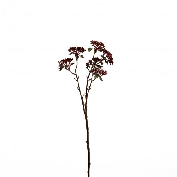 Patrinia-Zweig, 43 cm, mauve- burgund sort.