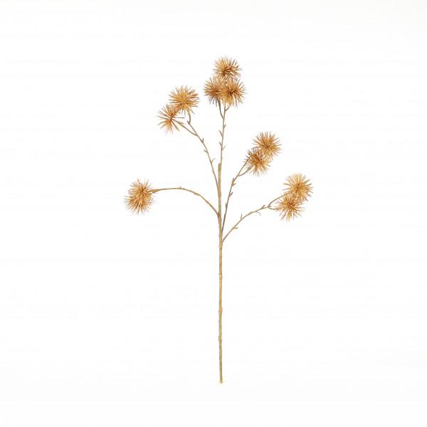 Kugeldistel x 5, 66 cm, beige