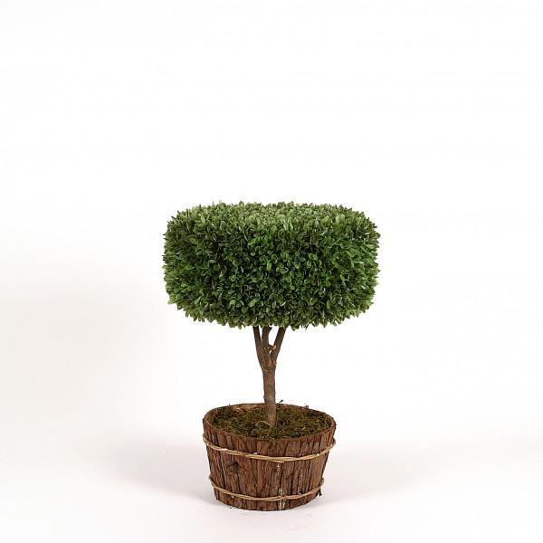 Buchs-Deko-Baum, 45 cm, grün