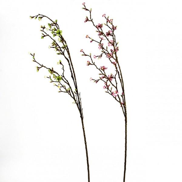 Kirsch-Zweig, blühend, 125 cm