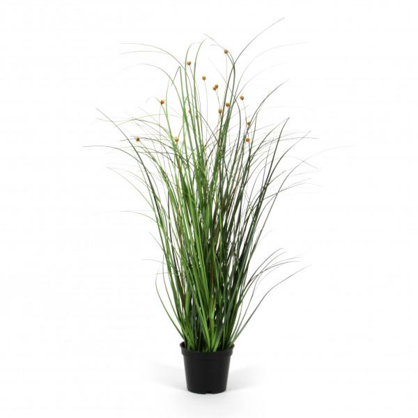 Gras Gypso getopft x 15, 53cm