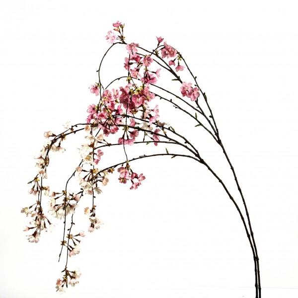Kirschblütenzweig, hängend, 119 cm, creme-pink