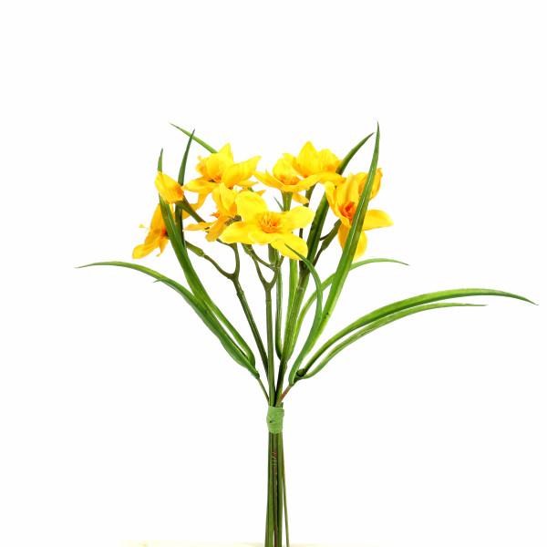 Narzissen x 3, mit Gras, gelb