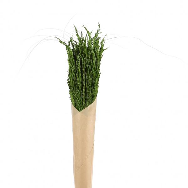 Naturgräser Bund 100gr