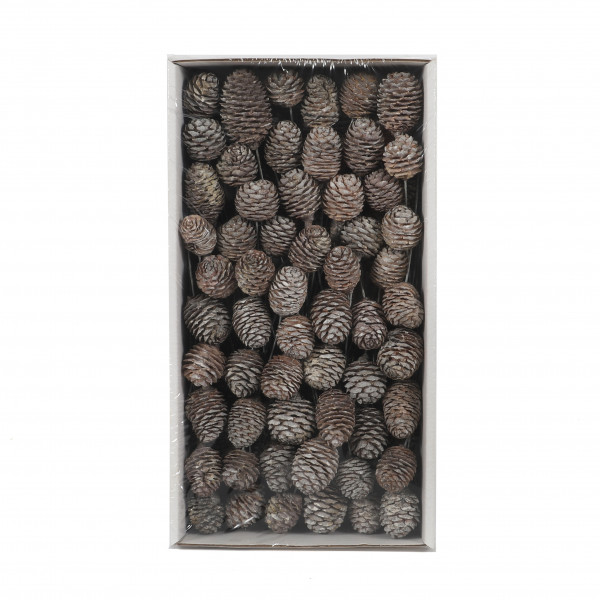 Muriizapfen am Draht stonewashed (Fensterkarton x 100 Stück)