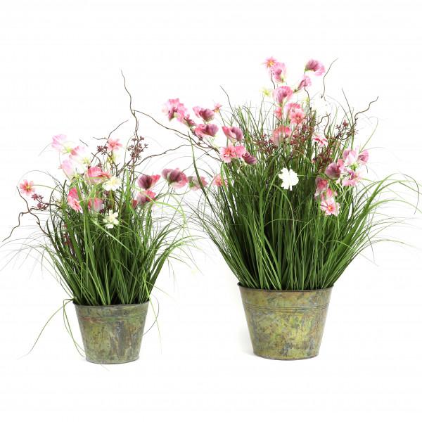Gras im Zinktopf Sommerwiese , pink