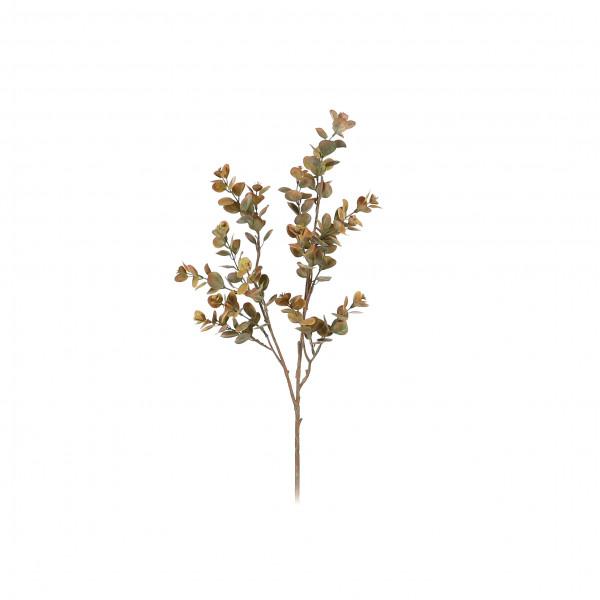 Eucalyptus-Zweig, 63.5 cm, grün-rot