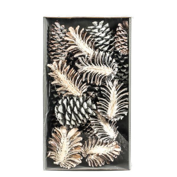 Pinus Maritima Slice Tray x 20 Stück white washed Zapfen