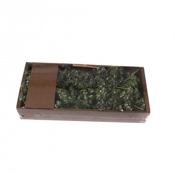 Hogeweed Mixed 400 Gr Tray grün frostet