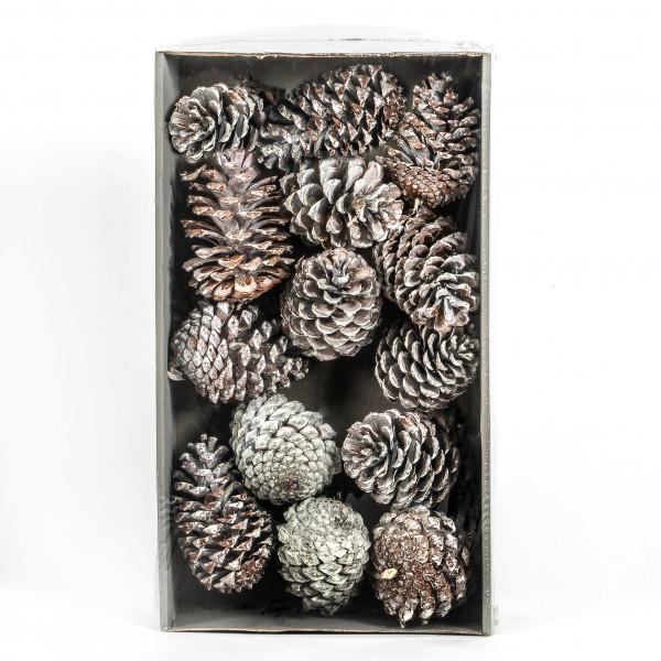 Pinus Maritima Tray x 12 Stück white washed Zapfen