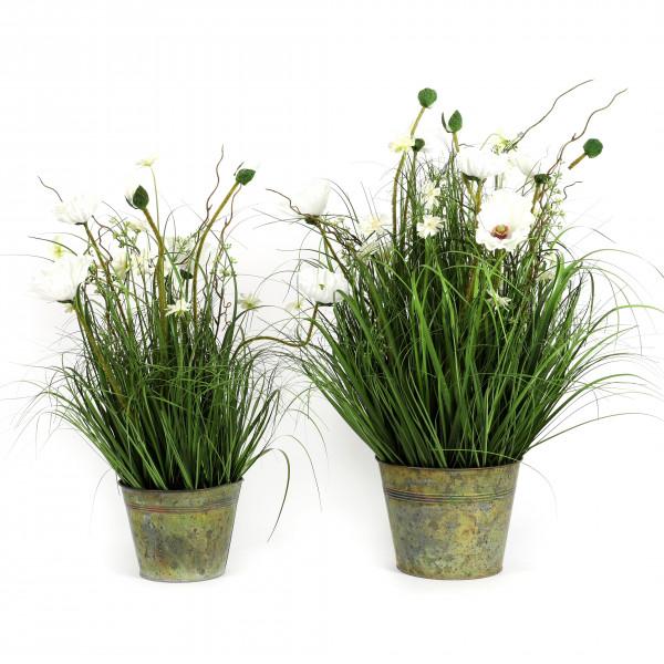 Gras im Zinktopf Sommerwiese , creme