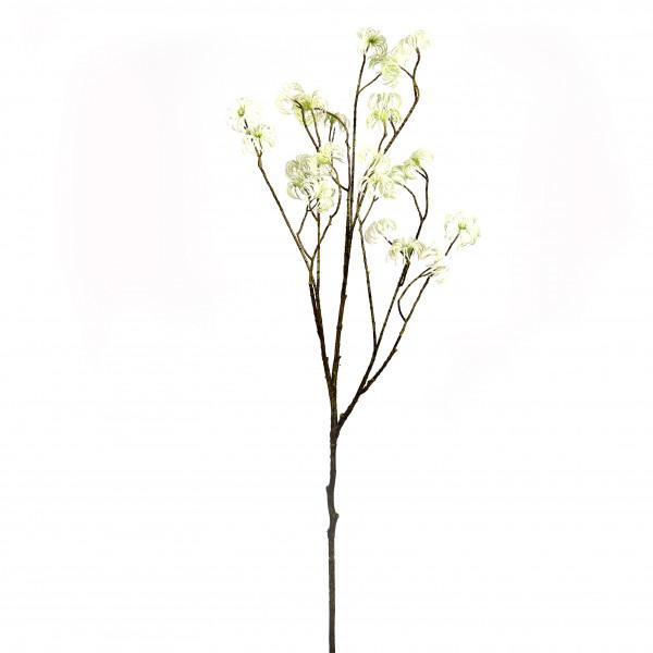 Clematis-Zweig, 131 cm, creme-grün