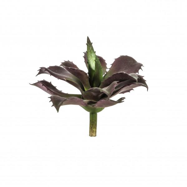 Aloe-Pick, 15 cm, grün-burgund