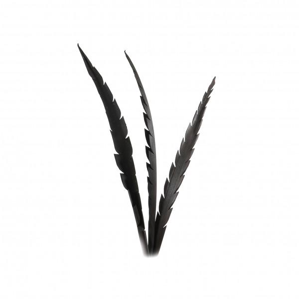 Caesar Leaves 60 cm Blt. x 3 Stück schwarz