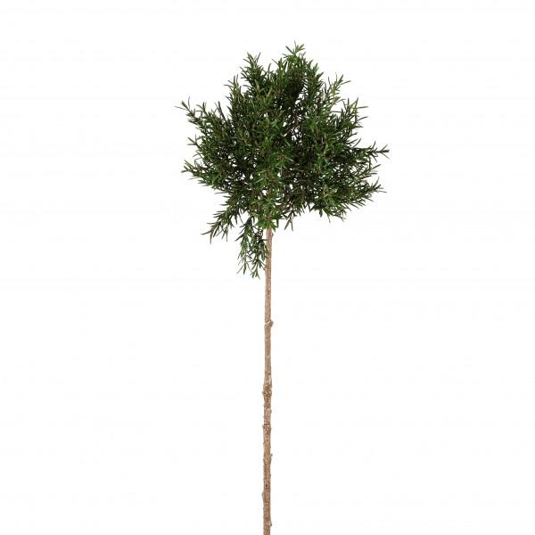 Rosmarin-Zweig, langstielig, 96 cm