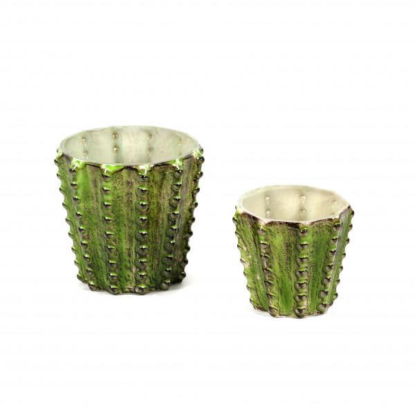 Topf Kaktus Glas, grün