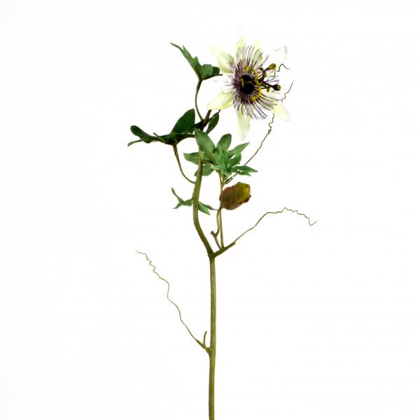 Passionsblume, 46 cm, weiß
