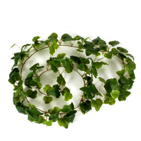 Efeugirlande Irland , 180 cm, grün