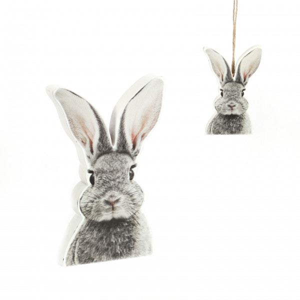 Hase Roger