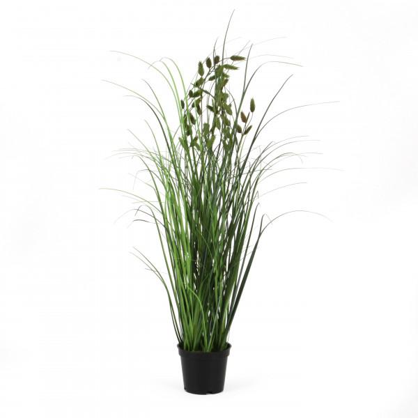 Briza getopft x 9, 53 cm, grün