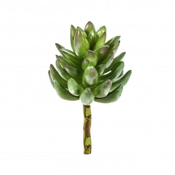 Sukkulenten-Pick, 17.5cm grün