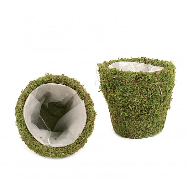 Moos - Korb Usambaragrösse D.11 x H.10,5 cm