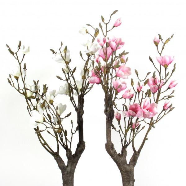Magnolien-Ast, 94cm, knorrig, pink