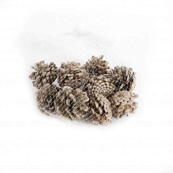 Kiefernzapfen 3-5 cm champanger Netz x 10 Stück