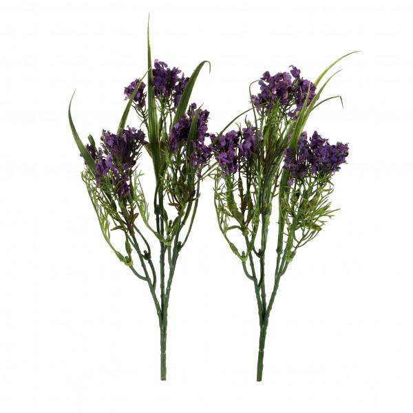 Asparagusbusch x 3, 28 cm