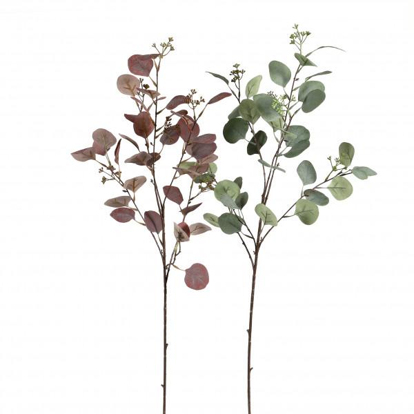 Eucalyptus-Zweig, 88 cm