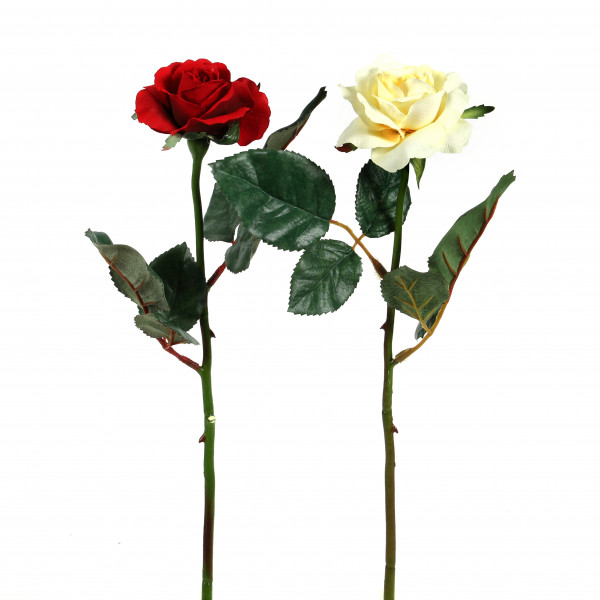 ROSE SWEETHEART