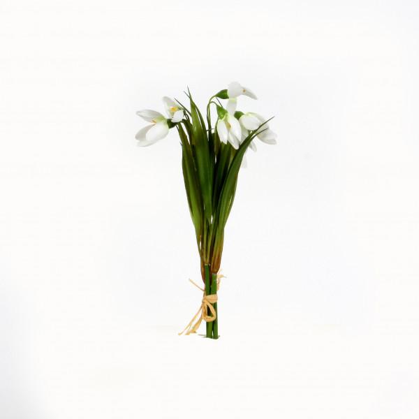 Schneeglöckchen, 22 cm, Bund/4 St., weiß