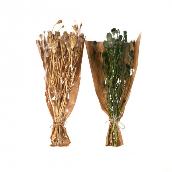 Wild Flower 50-60 cm Bund 100 gr.