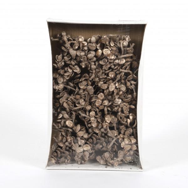 Moon brunch ( 400 gr Fensterkaron ) champanger