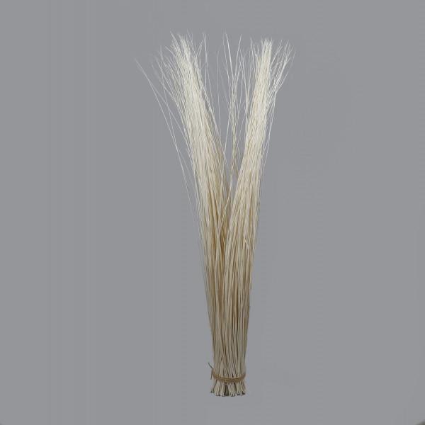 Willow Bunde 150-160 cm hoch D 15 cm gebleicht