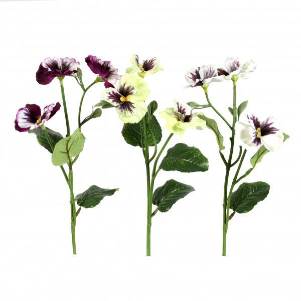 Stiefmütterchen, 26 cm, 3 Farben sort.