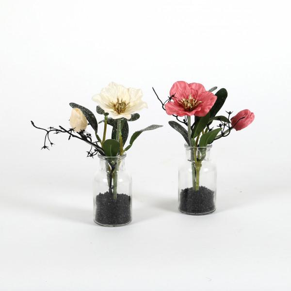 Christrose in Vase, 20 cm beeist