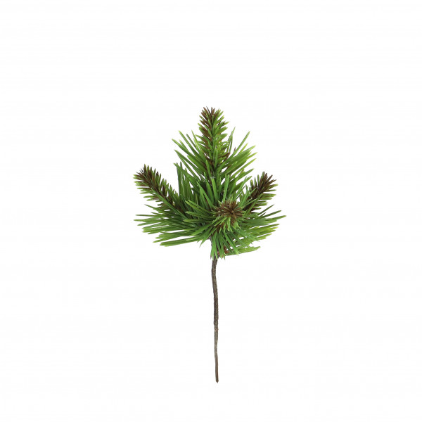 Kiefern-Pick x 4, Mini, grün-natur 20 cm
