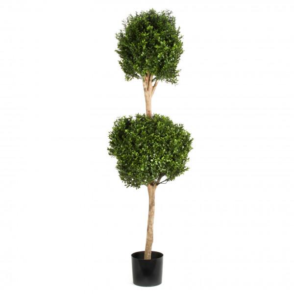 Buchsbaum, Doppelkugel , 120 cm, grün