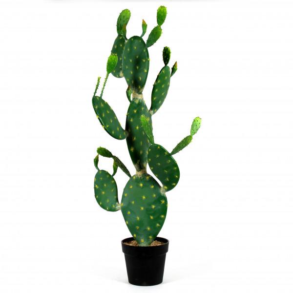 Ohrenkaktus, 119 cm, getopft, grün