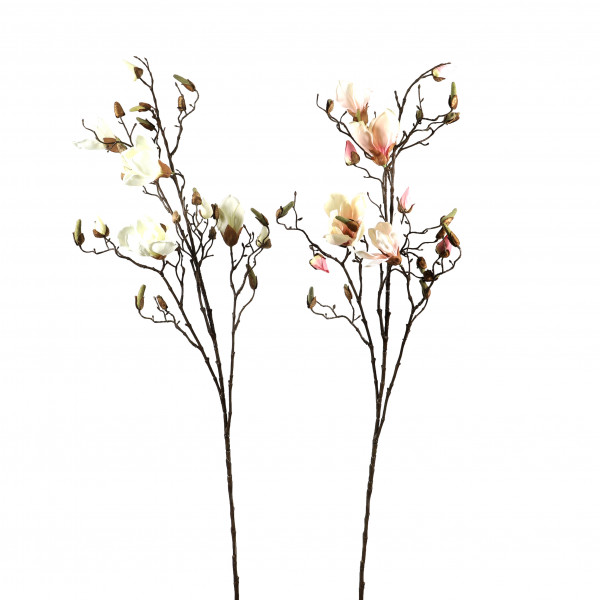 Magnolien-Ast, 109 cm