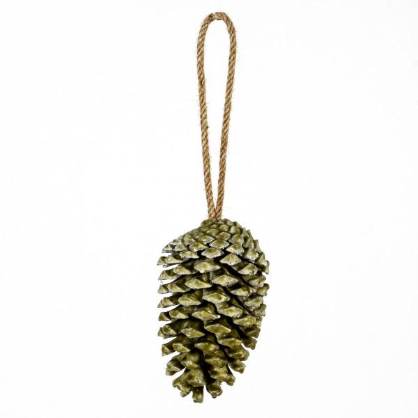 Pinus Maritima gewachst z.Häng en 15cm grün Blt.3 Stück Zapfen