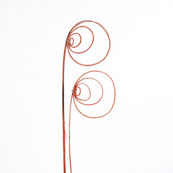 Rohrkreisel Cane coil ( Fensterkarton x 40 St.) orange white washed