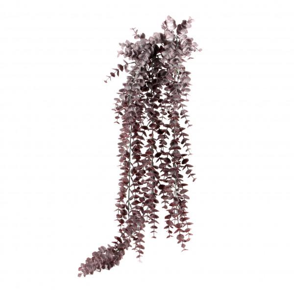 Ripsalis-Hänger,112 cm,grau grün