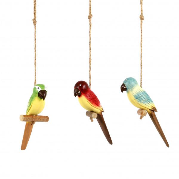 Papageien z. hängen, Holz, 3 Mod. sort. 21x5x4 cm
