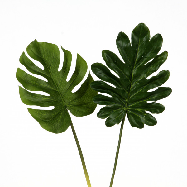 Philodendron-Blatt,20 cm,grün