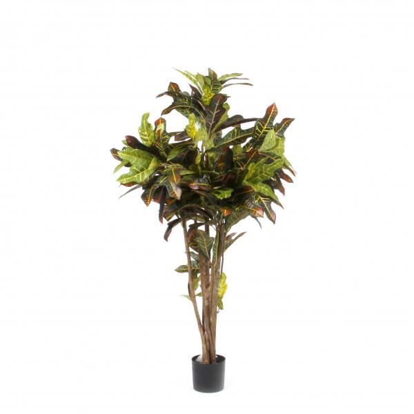 Croton, 90cm, 209 Blatt, rot/gelb/grün