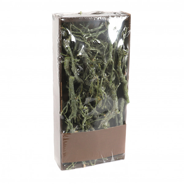 Stone wood 750 gr Tray green frosted