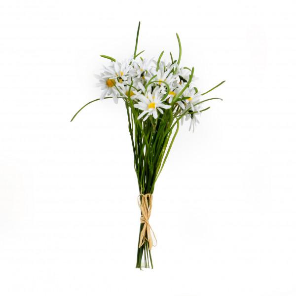 Margeritten, 32 cm, Bund/12 St .,weiß