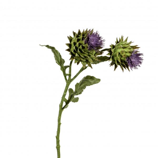 Artischocke x 2, blühend,56 cm